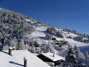 Ski Webcam Alps - Show ski slopes and ski area : Webcam ...