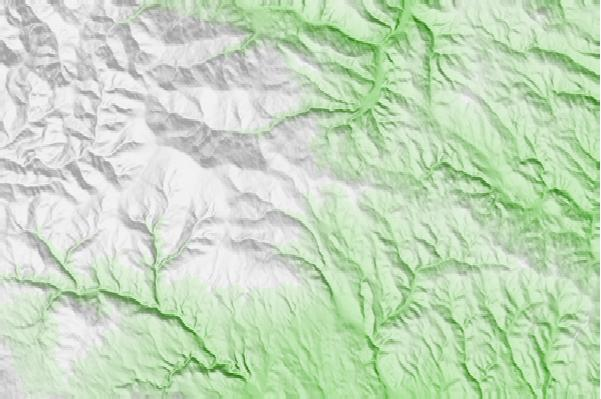 @{@location.name} neighbourhood basemap