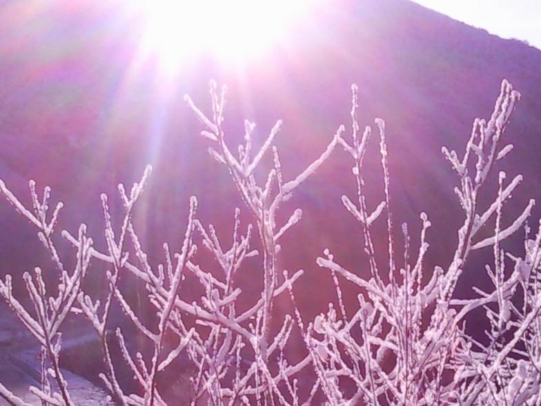 yaaaaaa viene la nieveeeeeeeeeeee...., Leitariegos