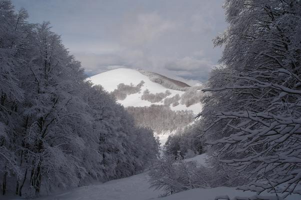 Monte Cardito, Terminillo