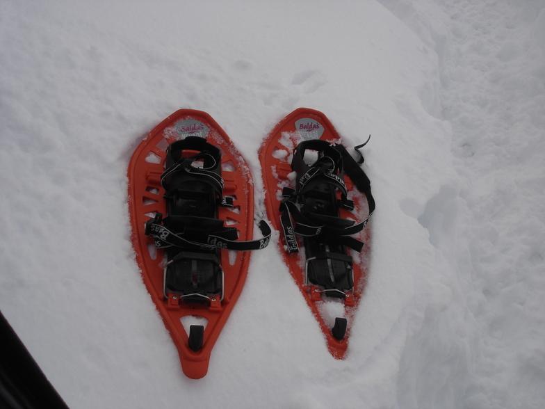 snowshoes, Seli