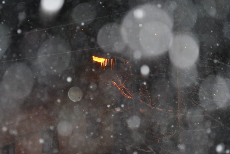 snow dreams, Seli