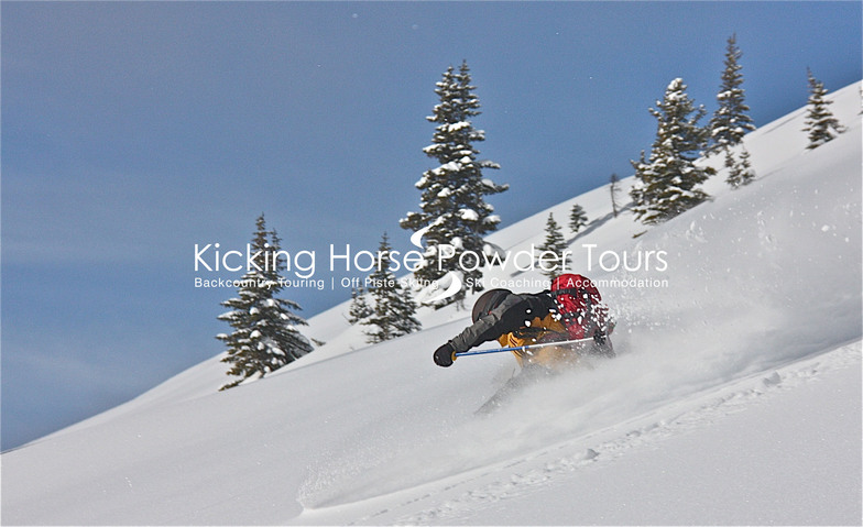 Teli skiing the powder..., Kicking Horse
