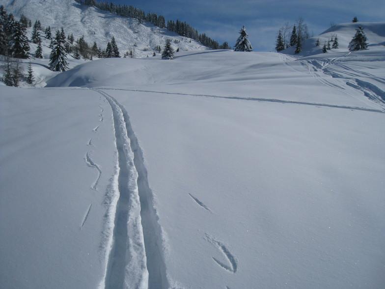 My Tracks, Les Gets