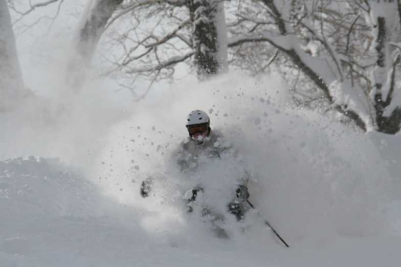 Big D at home in the pow!, Niseko Hanazono Resort