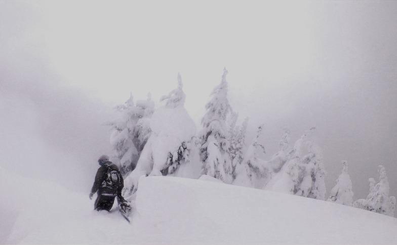 mystic cochino, Stevens Pass