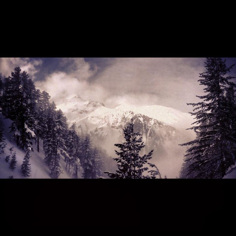 Magic Forest, Bansko