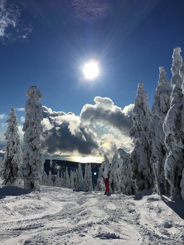 from sky chair, Cypress Mountain
