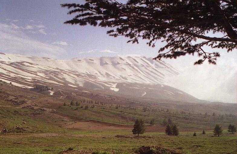 Qornet el sawda in spring, Mzaar Kfardebian