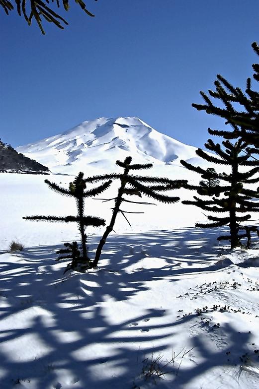 Volcan, Corralco Mountain & Ski Resort