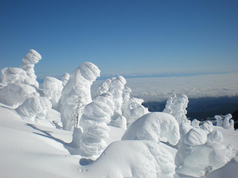 snow goblins, Mount Washington