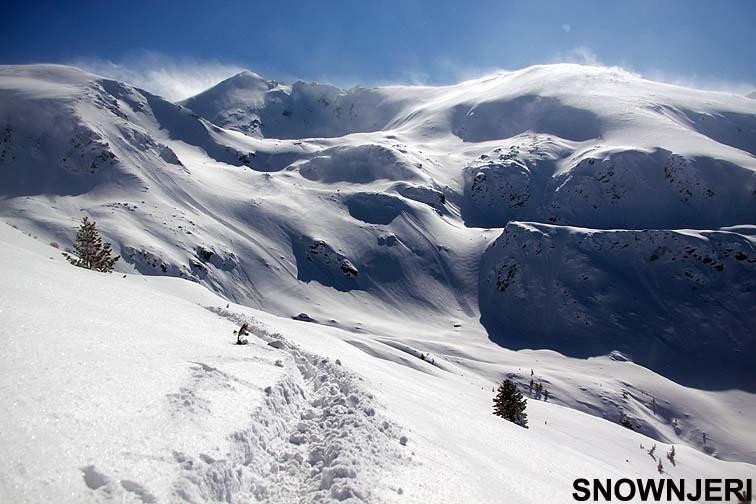 Snow Njeri, Brezovica