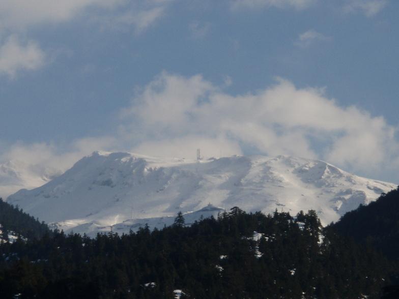 FTEROLAKA, Mount Parnassos