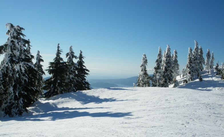View from the Peak, Cypress Mountain