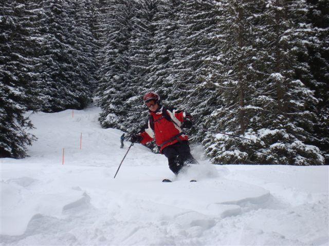 Godfrey in the Rinerhorn trees above Davos