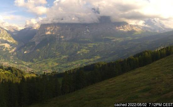 Live webcam per Grindelwald se disponibile