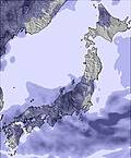 T japan snow sum05.cc23