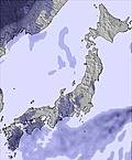 T japan snow sum19.cc23