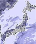 T japan snow sum25.cc23