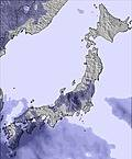 T japan snow sum30.cc23
