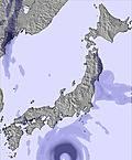 T japansnow144.cc23