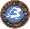 Cerro-Bayo logo