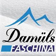 Damuls logo