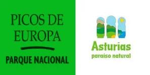 Picos-De-Europa logo
