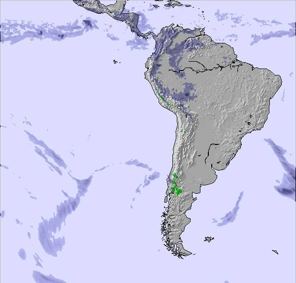 Weather Map and Snow Conditions for South America