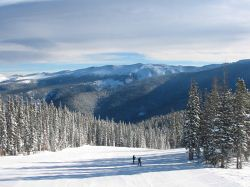 Central Valley Dodge >> Dodge Ridge Ski Resort Guide, Location Map & Dodge Ridge ski holiday accommodation