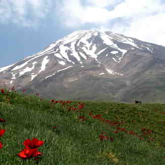 south view, Mount Damavand