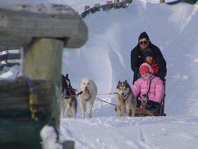 Ray Holiday and Team, Snow Farm