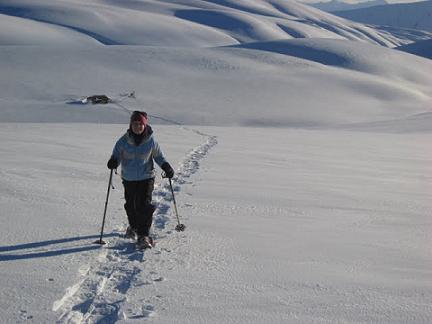 Snow Shoe Tour Aspiring Guides, Snow Farm