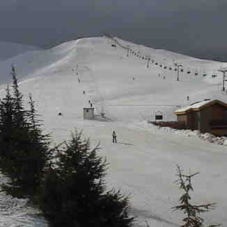 sunny Jonction, Mzaar Ski Resort