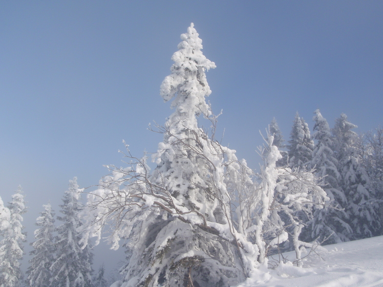 Mariborsko Pohorje snow