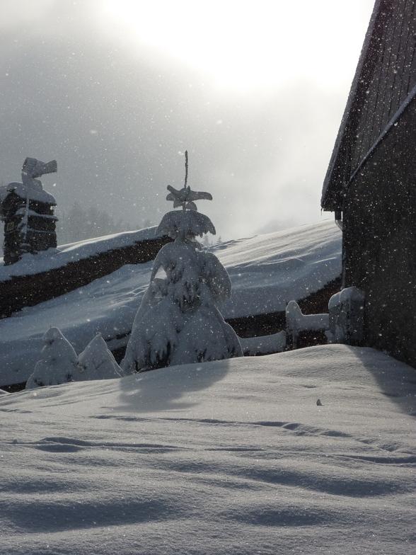 Fresh Snow, Sainte Foy