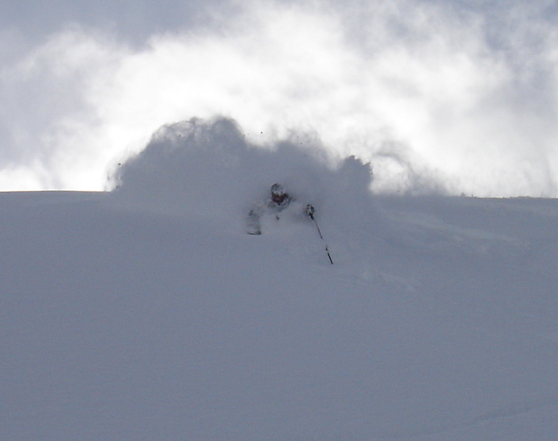 Finding the Pow with Adrenalin Descents, Kicking Horse