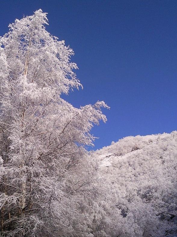 Primeras Nieves en El Valle, Leitariegos
