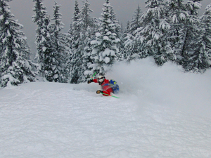 Deep in Targhee BC, Grand Targhee photo