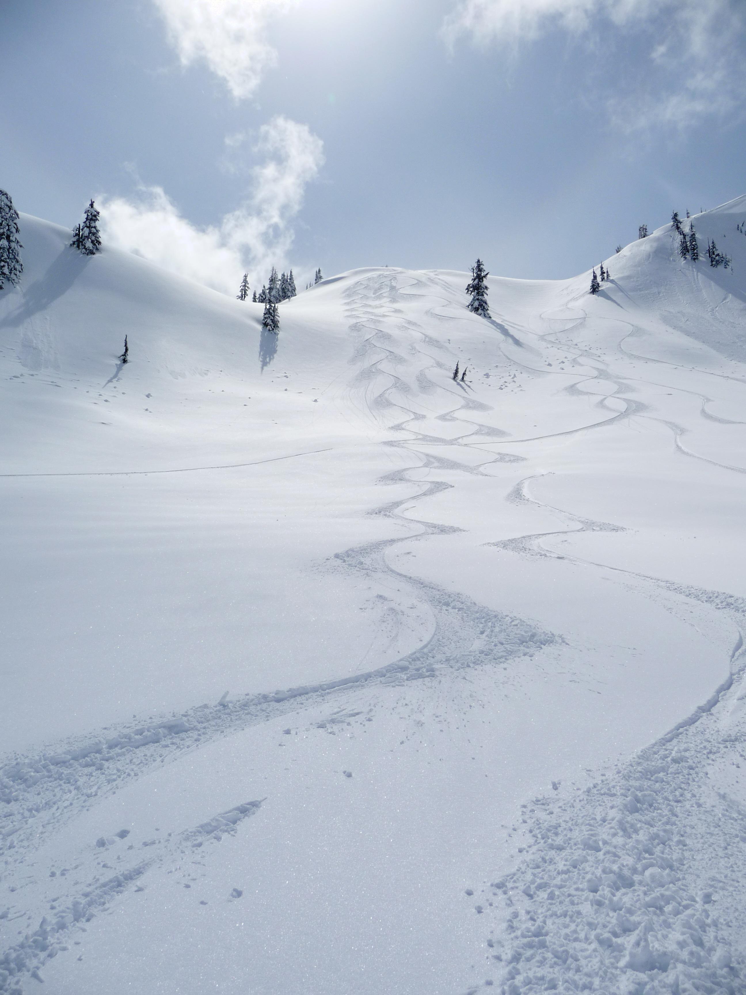 Grannies Ridge, Mount Baker