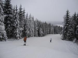 Typical piste in Vallasen, Vallåsen photo