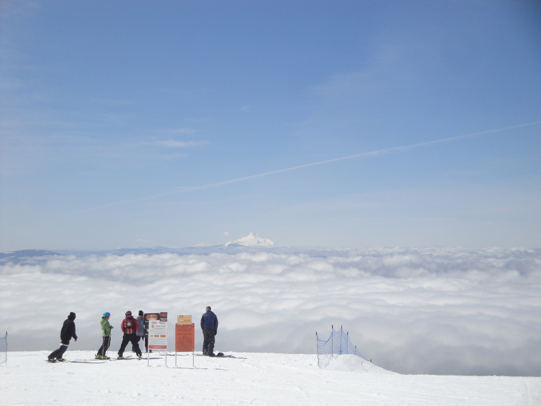Park Day, Timberline