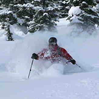 Castle Mountain Resort's Powder Stagecoach
