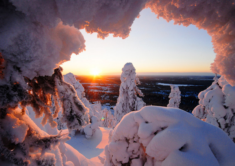 Snow at Rukatunturi, Finland