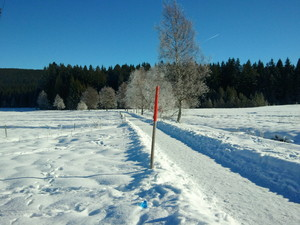 Winterwanderweg, Feldberg photo
