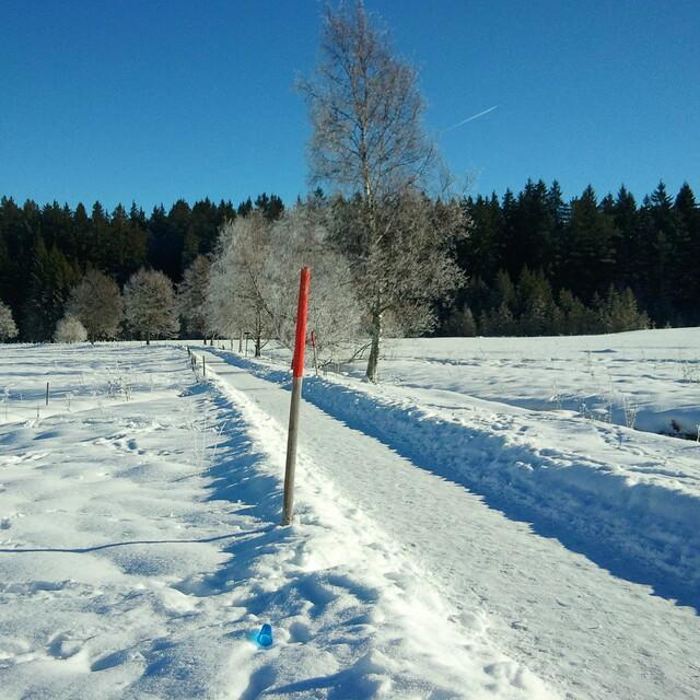 Winterwanderweg, Feldberg