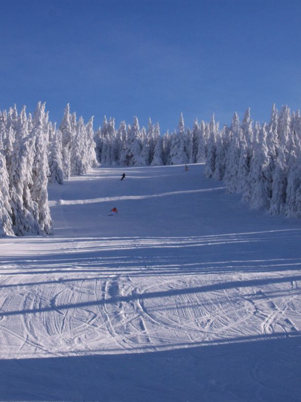 Where is everybody???, Kopaonik