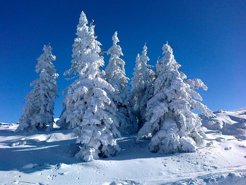 Flachau-Reitdorf snow
