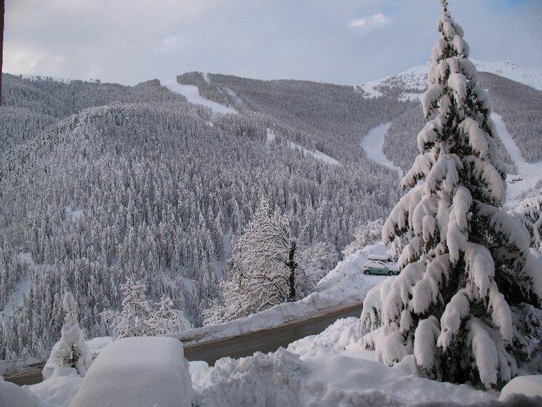 January 2008, Auron