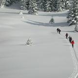 Gosti iz Slovenije, Vlašić